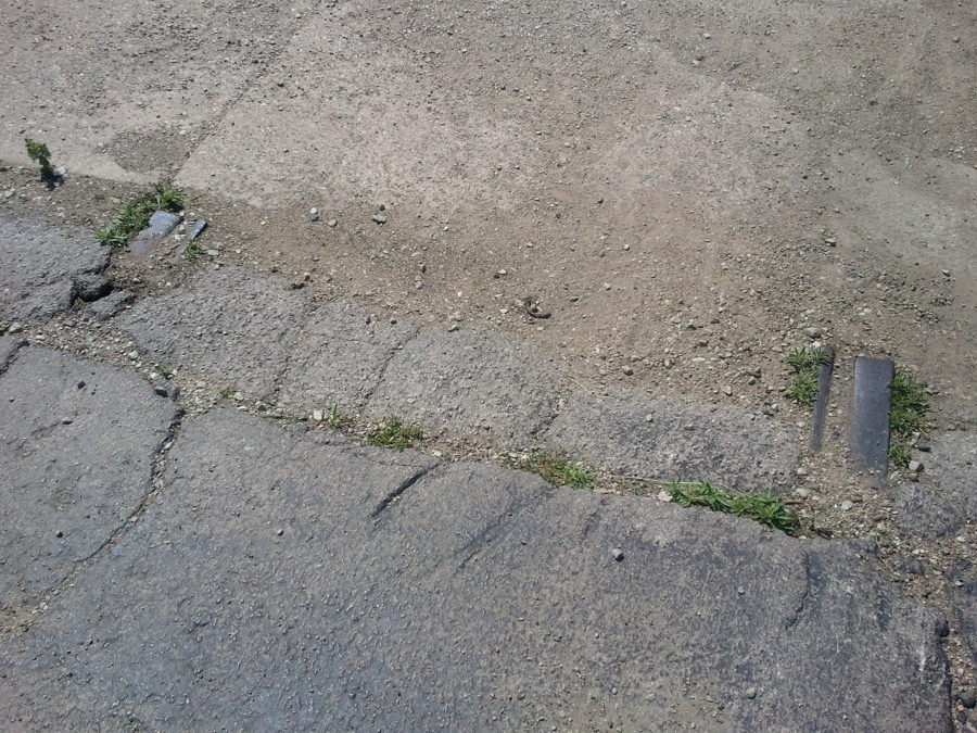 Remnants of streetcar rails on former Sedgwick Avenue right-of-way, north of Wendell Street