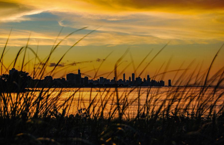 South Shore Nature Sanctuary [Eric Allix Rogers/Chicago Patterns]